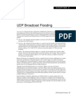 UDP Broadcast Flooding