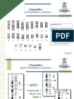 Citogenética PdC