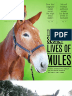 Mule Article in Vox Magazine
