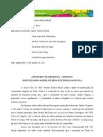 Atividade Colaborativa Modulo I - TAREFA 1 - MAPA DA REDE