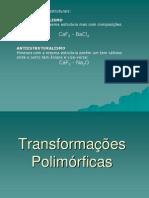 Area1-Transformacoes_polimorficas