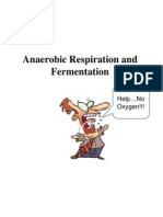 anaerobic respiration and fermentation