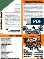 Panfleto FUICH 2012