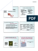 Citogenetica Clase 1