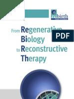 Rebirth Flyer
