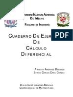 cuadreno de ejercicios de calculo diferencial