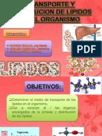 Expo Bioq Lipidos