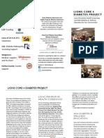 Lions Club Diabetes Project Brochure 2012