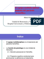 Importancia equipo multidisciplinar en  hemofilia. Doña Maria Garcia ( INFOHEMO 2012) 24.10.12