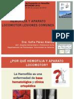 HEMOFILIA Y APARATO LOCOMOTOR LESIONES COMUNES. Dra. Sofia Pérez ( INFOHEMO 2012). 24.10.12