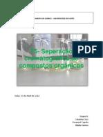 Relatório Cromatografia
