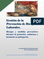 Gestión de la Prevención de Riesgos Laborales