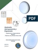 anatomia, antropometria y ergonomia