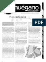 El Muégano 17