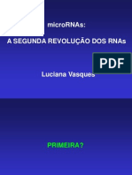 ncRNAAndmicroRNA_LucianaVasques