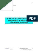 Plan de Accion Educativa Sindrome Down