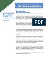 Blueprint for Environmental Remediation