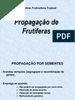 Aula Propagação 2010