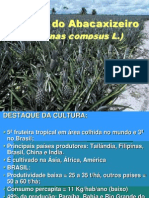 AULA Cultura Do Abacaxizeiro 2009
