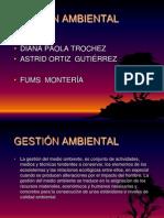La Gestion Del Medio Ambiente 091016141256 Phpapp01