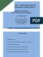REMEDIACION DE PASIVOS - Caso Cromatos Mexico