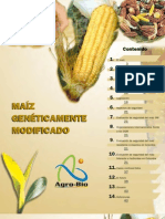 Maiz Geneticamente Modificado
