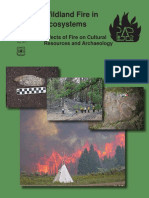 Effects of Fire on Cultural Resources and Archeology