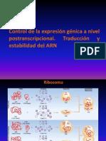 10- Maduración del ARNm eucariota- Regulación postranscripcional