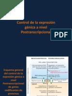 9- Regulacion de La Expresion Genica en Eucariotas (Parte 2)
