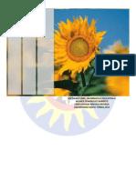 Informatica II Revista