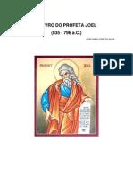 ESTUDO PANORÂMICO DO LIVRO DE JOEL