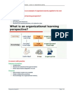 Organizational Learning - Notes on Daniel McFarland's 12-2012 Lecture