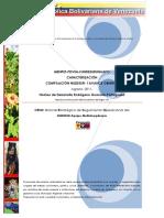Caracterizacion  NUDESUR 2011