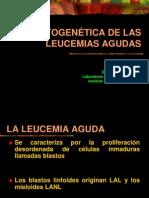 genética de leucemias 2007 (2)
