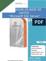 Manual SQL Server