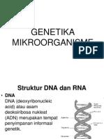 GENETIKA MIKROBA