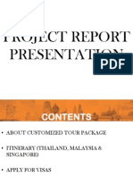 Project Report Presentation