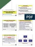 processo-organizacao