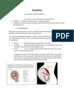 Final Placenta