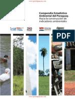 Compendio Estadístico Ambiental - SEAM - PortalGuarani