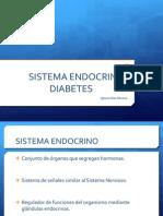 Trabajo Biologia Sistema Endocrino (Diabetes)