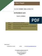 INDRODUÇÃO_ORGANIZAÇÃO_ERMELINDA_I