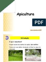 Apicultura -  Introdução