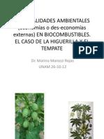 Externalidades en Higuerilla y Jatrofa