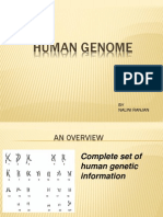 Bio Info Seminar