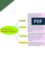 Mapa Mental - ESTÁGIOS DA DESPESA PÚBLICA