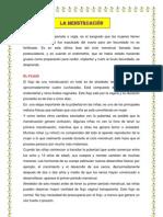 LA MENSTRUACIÓN.docx