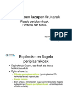 Flageloak2