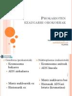 Prokariotoen ezaugarriak