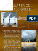 Dobrescu Fraguta Poluare Cu Metale Grele